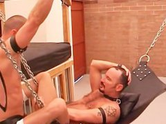 Raw sex Pounding Sling Style