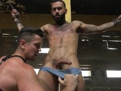 Mr. Ducati's New Fuck anal Toy fuck is Chained up and Ruthlessly Flogged