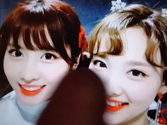 TWICE sex nayeon & momo xnxx cum tribute