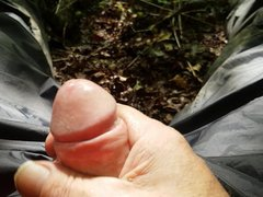 Playing sex in the woods